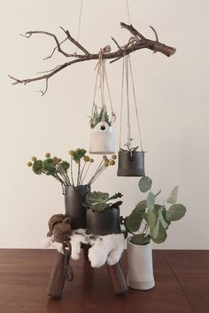 Branch with hanging plants. Rustic-ly pretty!