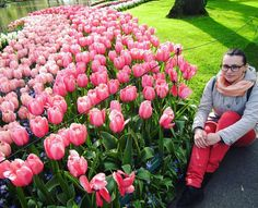 Яскравий спогад що прожене сiрi турботи))) #flowers #tulips #Keukenhof #Netherlands #park #nature #brightness #travel by stasiaboyko