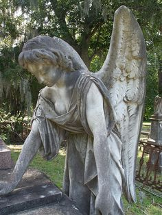 angel statue photography