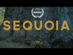 SEQUOIA  - (Aly Michalka) 2014 SXSW OFFICIAL SELECTION FILM TRAILER