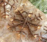 twig snowflake
