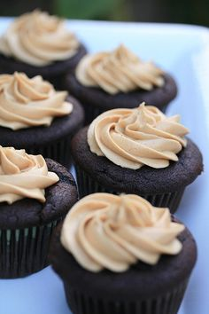 Peanut Butter Crack or Barefoot Contessa's Chocolate Cupcakes with Peanut Butter Icing