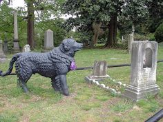 Guarding Her Grave  This is the famous cast iron dog in Hollywood Cemetery-Richmond, Virginia. Little Florence Bree's brother begged his father for this dog, which used to stand outside a merchant's shop in Richmond. The father eventually bought the dog for him and when his little sister Florence died of scarlet fever the dog was placed at her grave. The dog not only watches over Florence but also was put there to save it from being melted down for confederate bullets during the Civil War…