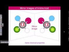 Amino acid structures (part 1)