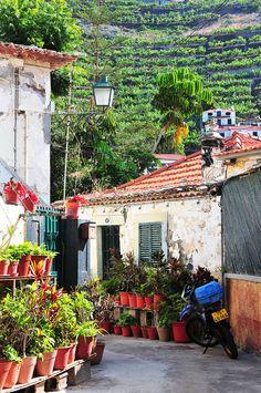 Madère : direction l'Ouest - via My Sweet Escape 12.01.2015 | Une autoroute relie Funchal à la côte ouest en moins d'une heure, mais nous avons préféré longer la côte sinueuse, ses monts et vallées, et nous imprégner de ses paysages sauvages. Sublime…Photo: camara de lobos madère