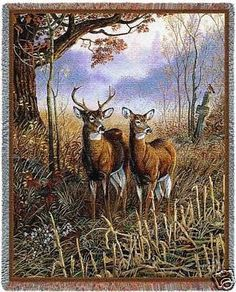 """""""White Tail Deer Couple Throw"""" This throw features a white tail deer couple standing in watch among the tall grass in this quiet woodsy scene. The fog is just barely lifting in the field behind them."""