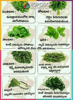 Natural Health Tips, Good Health Tips, Health And Beauty Tips, Health Facts, Health Diet, Health And Nutrition, Home Health Remedies, Natural Health Remedies, Healthy Juices