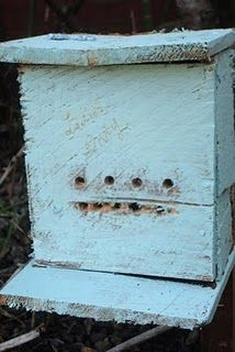 Ladybug house to make ~ they eat aphids!