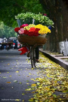 Flowers on wheels