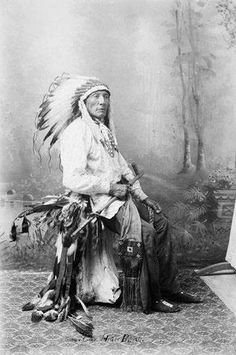 http://www.american-tribes.com/messageboards/dietmar/HighBearbrule.jpg