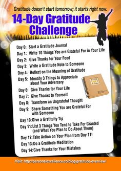 14-Day Gratitude Challenge Manifesto ~ This is what started it all, all the pins about gratitude and thankfulness. I'm grateful for that, too. :)