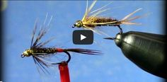 Check out the great new fly tying tutorial by Tim Cammisa where he shared with us two variations of the Soft Hackle Pheasant Tail.