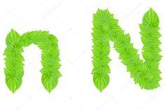 Alfabeto inglés hecho de hojas verdes con letra N en mayúscula pequeña y mayúscula grande English Alphabet, Grande, Stock Photos, Green, Letter N, Green Leaves, So Done