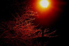 Lichtvervuiling tast geheugen aan
