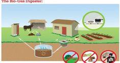 green energy: biogas