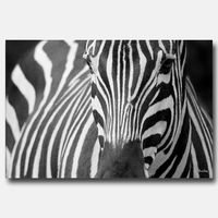 Murs en vedette le shopping foyers salons et d co for Deco murale zebre