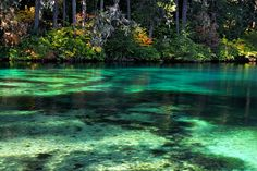 Clear Lake, Oregon by Falling Art, via Flickr
