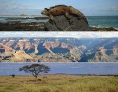 12 parques nacionais que valem uma visita