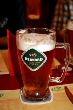 Bernard Beer Mugs, Pint Glass, Tableware, Drink, Dinnerware, Beverage, Beer Glassware, Tablewares, Dishes