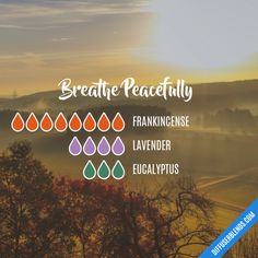 Breathe Peacefully - Essential Oil Diffuser Blend