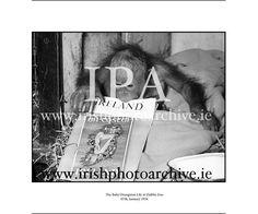 January 1954 Dublin Zoo - The Baby Orangutan Lily - A Present form an Irish Man in Borneo. Dublin Zoo, January 7th, Baby Orangutan, Irish Men, Borneo, Photo Archive, Little Babies, Monkey, 1950s