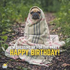 Happy-Birthday-I-am-dressing-up-for-the-party-cute-dog
