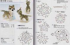 El esquema de los productos a partir de perlas