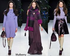 Mulberry winter color 2012