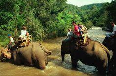 I caraibi dell'est,Thailandia acque cristalline ,sole ,spiaggie e tanto divertimento.Volo + soggiorno a partire da 490€ con possibilità di aggiungere tour.Partenze da maggio a agosto. http://www.iviaggididabi.net/estate___.html #viaggi #vacanze #estate #offerte #iviaggididabi  per info e prenotazioni iviaggididabi@live.it 3332697796/3395342193