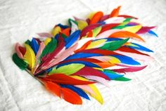 i know someone who will want to do this - children's bird wings Bird Wings Costume, Rooster Costume, Parrot Costume, Parrot Wings, Diy Wings, Diy Costumes, Halloween Costumes, Costume Ideas, Fascinator