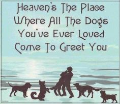 I certainly hope this is true, because with out them i'm not sure Heaven is all that i want it to be!!!!!!!!!!