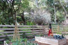Shiva Rose romantic modern ranch