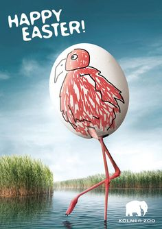 """Happy Easter from Cologne Zoo -- Cologne Zoo is running a print advertising campaign wishing visitors a Happy Easter. The three print ads show plain white eggs decorated as a penguin, pink flamingo and a crocodile. 'Happy Easter. Kölner Zoo'"""