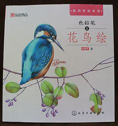 Chinese Colored Pencil Drawing Flower and Bird Art Painting Book