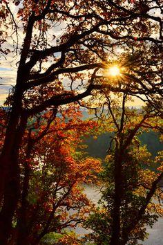 """Morning Treasure, Portland, Oregon ~ Photography by Susan Kramer"