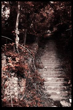 Hell House Steps - Ellicott City #Maryland
