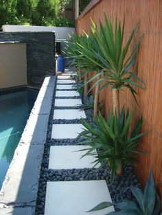 Side yard. Concrete pavers with PS gold rock surrounding