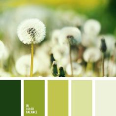 """Light, delicate palette. Impregnated freshness and cleanliness. It's like standing in the middle of summer meadows. Pastel, soft shades of green create a pleasant light and airy. Intense green color scheme lends depth and nobility. Such a composition is good for the """"green"""" home interiors. It is also ideal for decoration of office space."""