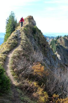 Der Hochrhein, Switzerland Mountain Hiking, Beautiful Scenery, Switzerland, Paths, Germany, Country Roads, Journey, Europe, Adventure
