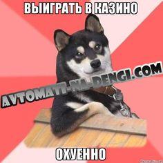avtomati-na-dengi.com