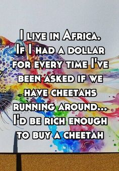 """I live in Africa. If I had a dollar for every time I've been asked if we have cheetahs running around... I'd be rich enough to buy a cheetah"""
