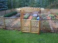 inexpensive fence idea