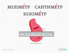 Наголос у словах «кілометр», «сантиметр», «міліметр»
