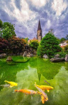 Photo by Kitty Bern Bern, Switzerland, Pond, Grass, Golf Courses, Kitty, Sky, Awesome, Water