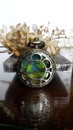 Hey, I found this really awesome Etsy listing at https://www.etsy.com/listing/236850134/steampunk-pocketwatch-terrarium-pendant