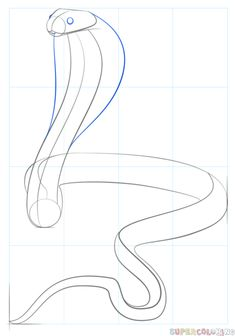 How to draw a King Cobra | Step by step Drawing tutorials