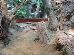 Fake Rock / Natural viv, photo step by step DUW! - Page 7 - CaptiveBred Reptile Forums, Reptile Classified, Forum