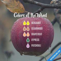 Colors of the Wind - Essential Oil Diffuser Blend #MassageOils #PatchouliEssentialOilblends
