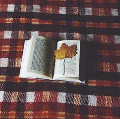 Картинка с тегом «book, autumn, and fall»