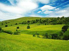 Wide Green Landscape G1 Wallpaper